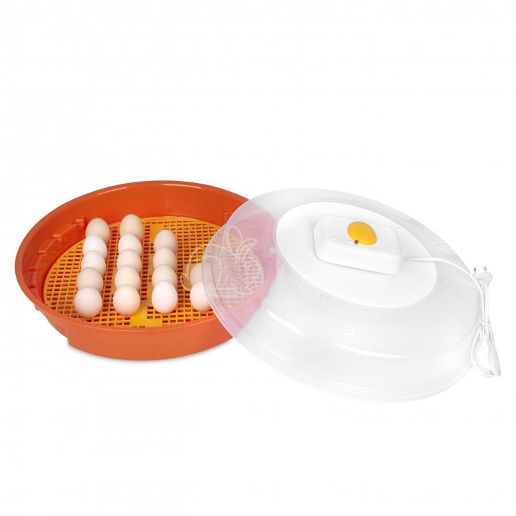 Inkubator z klujnikiem PUISOR