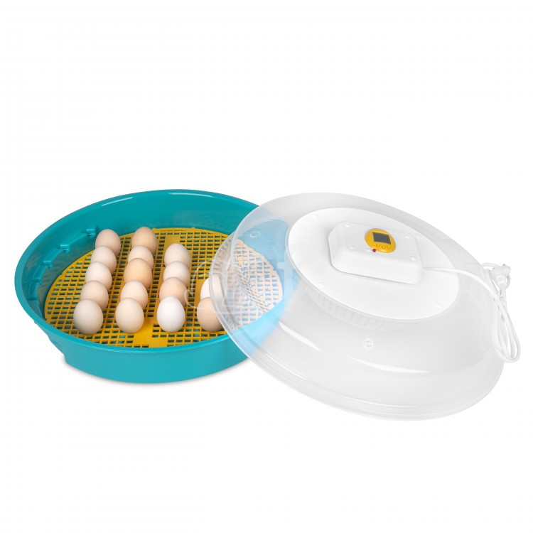 Inkubator z klujnikiem i wyświetlaczem PUISOR+